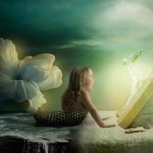Magic of Literacy The Mermaid